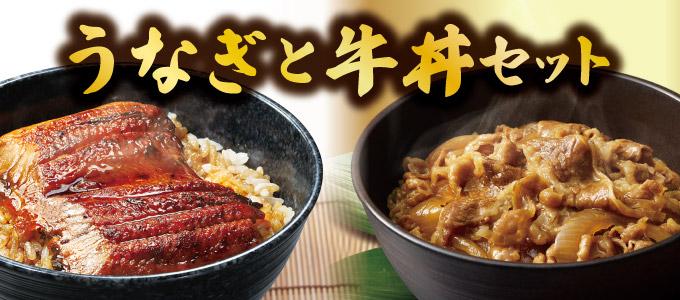うなぎ12食と牛丼10食セット